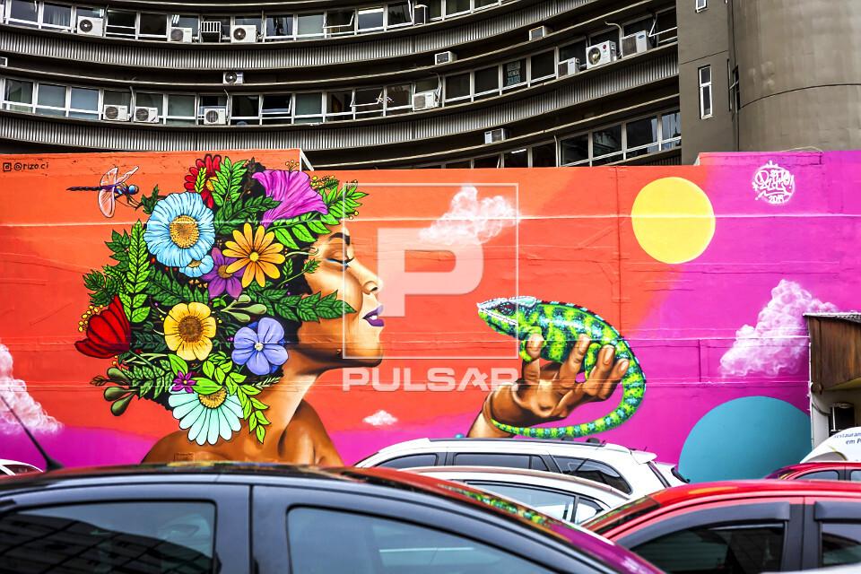 Grafite - obra de Rodrigo Rizo