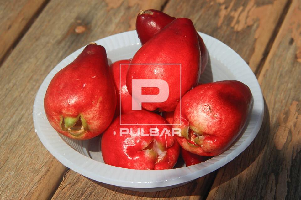 Detalhe dos frutos de jambo colhidos - também denominados jambo-da-índia , jambo-moreno , jambo-rosa ou jamb