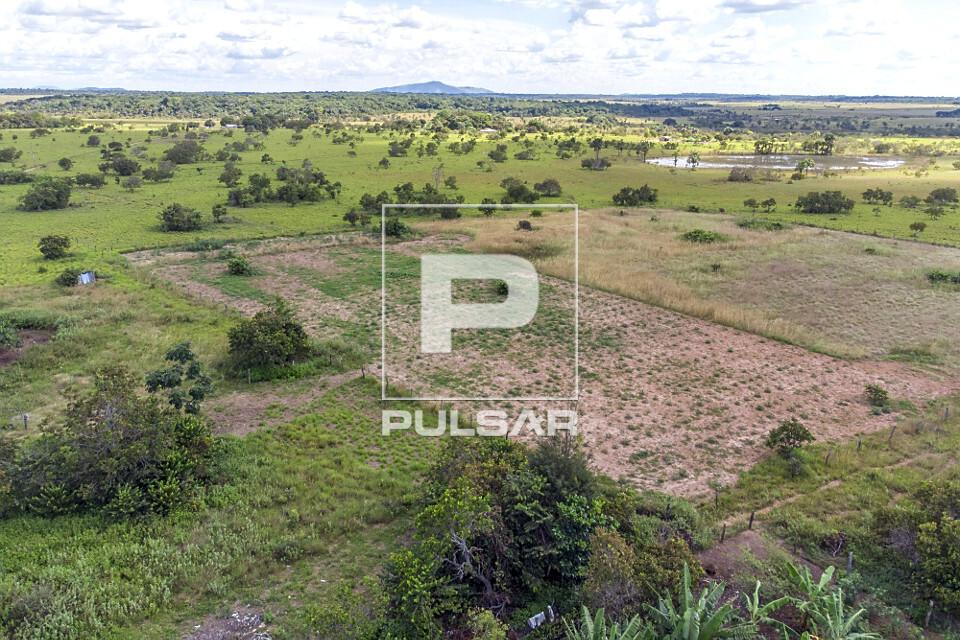 Vista de drone de plantação de mandioca da Comunidade Mangueira - etnia Taurepang - Terra Indígena Araçá