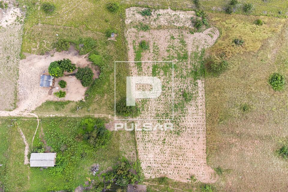 Vista perpendicular de drone de moradias e plantação de mandioca - Comunidade Mangueira - etnia Taurepang -