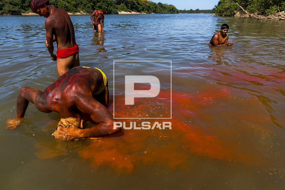 Indígena da Aldeia Afukuri e etnia Kuikuro lavando tinta de urucum dos cabelos no rio Culuene após cerimôni