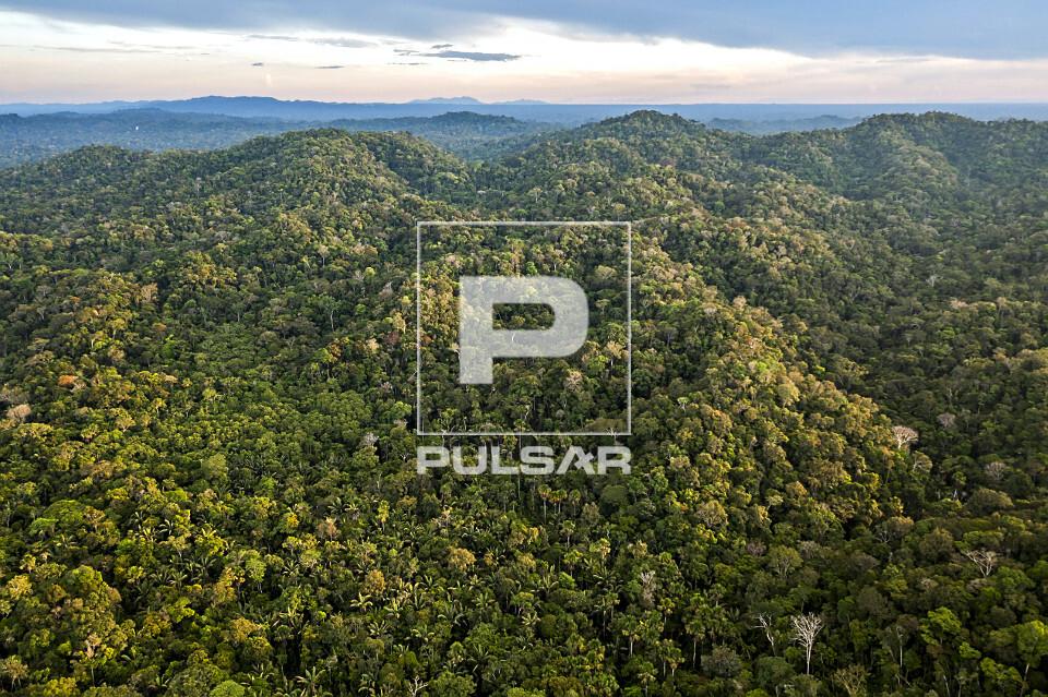 Vista de drone de região montanhosa na floresta amazônica - Parque Nacional da Serra do Divisor