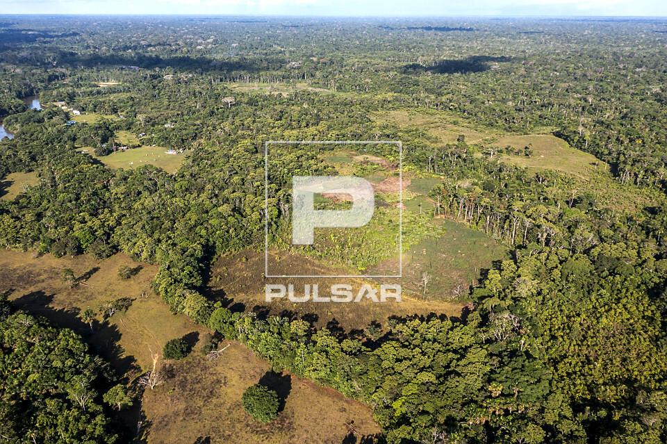 Vista de drone de desmatamento da floresta amazônica no Parque Nacional da Serra do Divisor