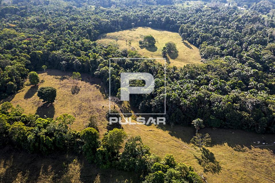 Vista de drone de área desmatada para criação de gado - área do Parque Nacional da Serra do Divisor