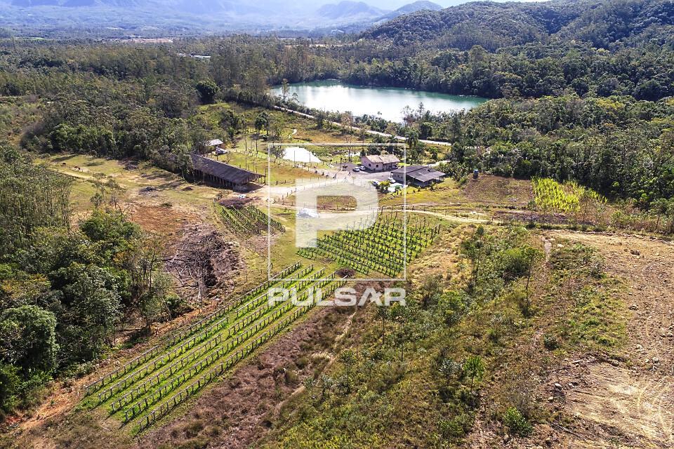 Vista de drone de plantação de pitaia em pequena propriedade rural - ao fundo lagoa em recuperação após e