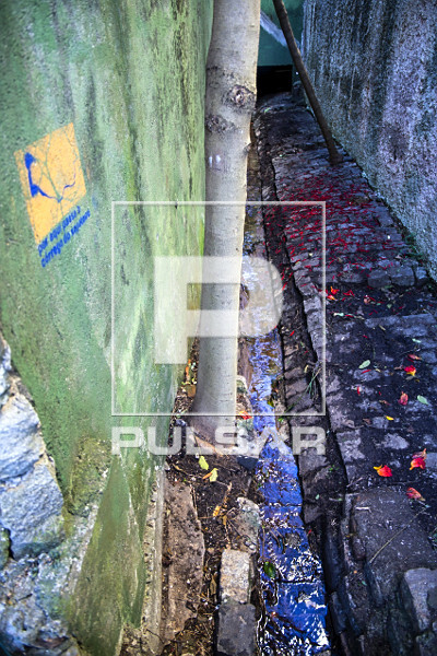 Detalhe da nascente do córrego do Sapateiro na rua Lutfalla Salim Achoa - bairro Vila Mariana