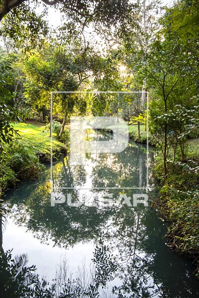Foz do córrego do Sapateiro no lago do Parque do Ibirapuera