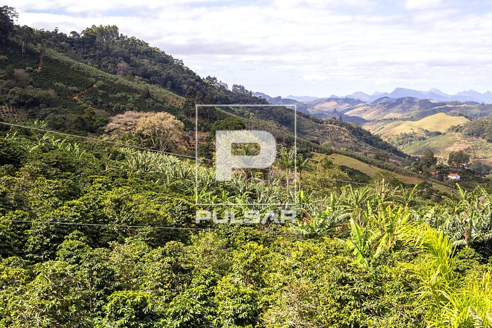 Plantação de café, banana e eucalipto na região serrana