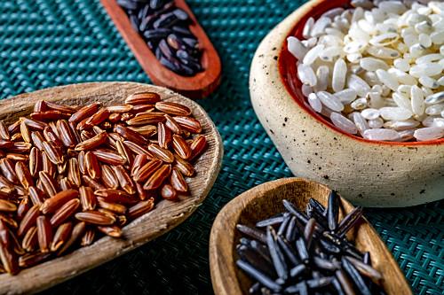 Detalhe de variedades de arroz - Carnaroli, Negro, Selvagem e Vermelho