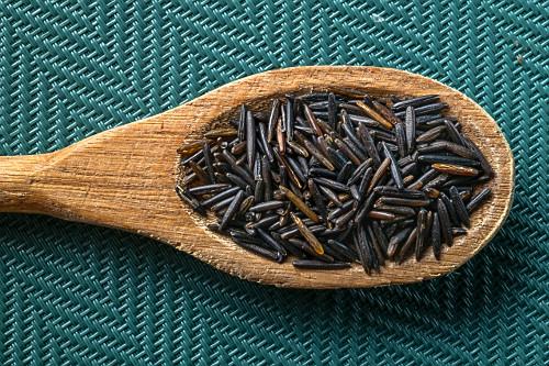 Detalhe de arroz selvagem