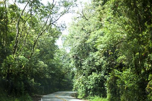 Rodovia Paraty-Cunha conhecida como Estrada Parque Paraty-Cunha ou Estrada Parque Comendador Antonio Conti - a