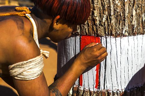 Indígena da aldeia Afukuri etnia Kuikuro pintando troncos de madeira que simbolizam os mortos homenageados du