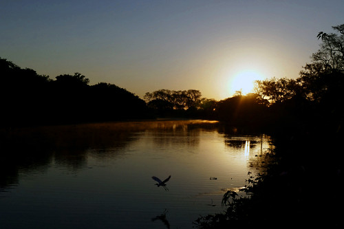 Rio Pixaim ao amanhecer