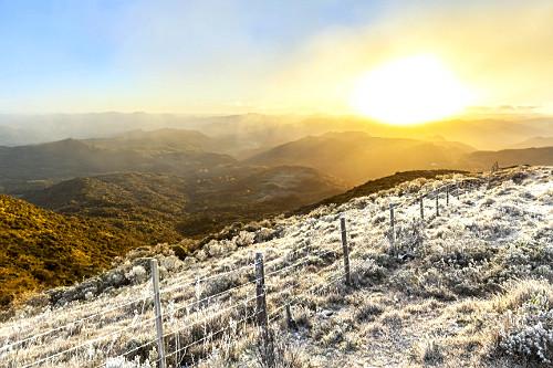 Vegetação no Morro das Antenas coberto por neve ao amanhecer - também conhecido por Morro das Torres