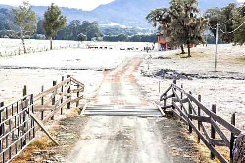 Mata-burro na entrada de fazenda e pasto congelado após geada