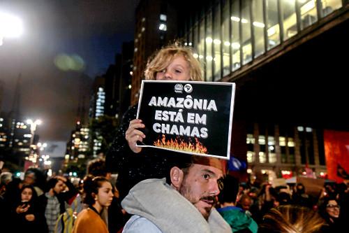 Criança com cartaz durante manifestação em favor da Amazônia na Avenida Paulista