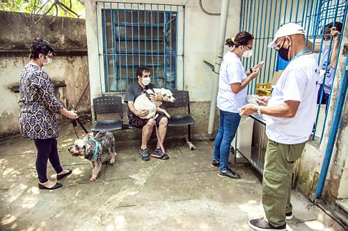 Campanha Municipal de vacinação de animais domésticos contra a raiva - antirrábica no posto de saúde no H
