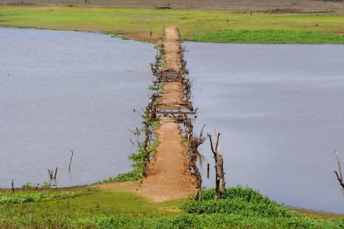 Antiga estrada de terra e ruínas de ponte que estavam submersas no Córrego do Limoeiro seco em período de e