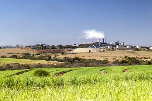 Plantação de cana-de-açúcar e ao fundo usina produtora de etanol e açúcar