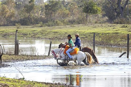 Peões boiadeiros atravessam açude de fazenda com nível baixo durante estiagem após a travessia do gado - P