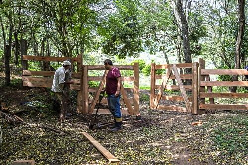 Homens construindo porteira de madeira em sítio