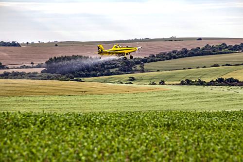 Propriedade rural com avião agrícola aplicando ureia granulada sobre plantação de milho