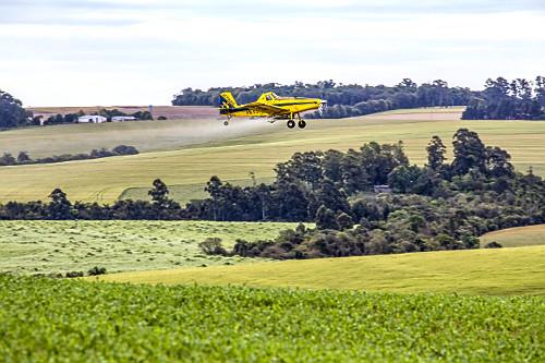 Avião agrícola aplicando ureia granulada para adubar plantação de milho