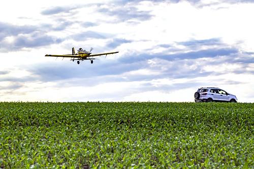 Avião agrícola aplicando ureia granulada sobre milharal