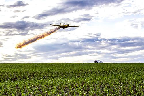 Avião agrícola soltando fumaça - descarga do motor turbinado - enquanto espalha ureia sobre milharal