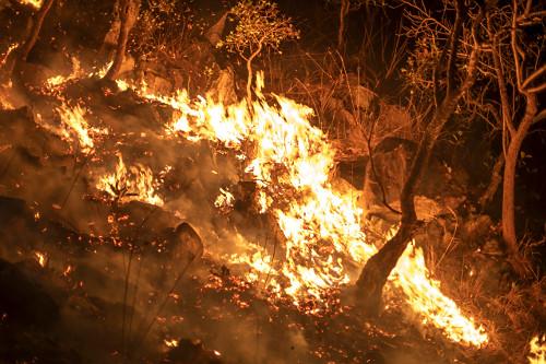 Vista noturna de fogo alto durante incêndio no cerrado - APA Área de Proteção Ambiental Pouso Alto - Chapa