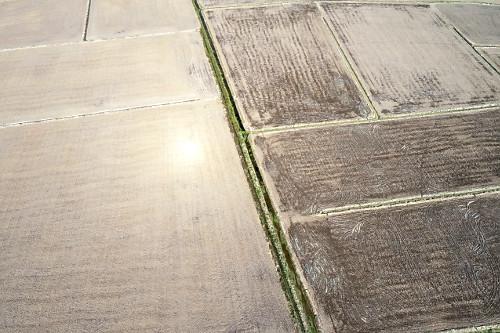 Vista de drone de terra preparada para plantio de arroz