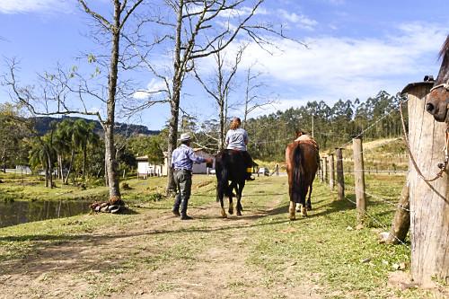 Passeio a cavalo em sítio