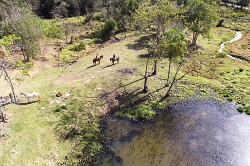 Vista de drone de passeio a cavalo em pequena propriedade rural