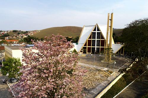 Vista de drone de árvore florisa e Igreja de São Miguel
