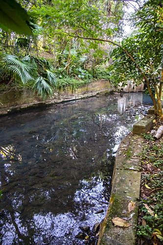 Foz do córrego do Sapateiro que alimenta o lago do Parque do Ibirapuera