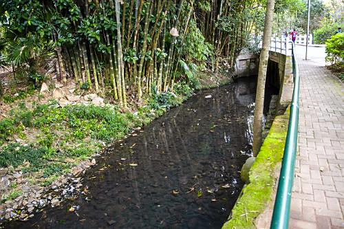 Foz do córrego do Sapateiro - alimenta o lago do Parque do Ibirapuera após passar por estação de tratament