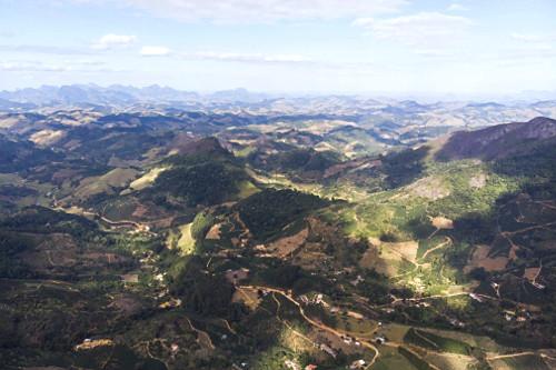 Vista de drone de pequenas propriedades rurais com plantação de café e eucalipto