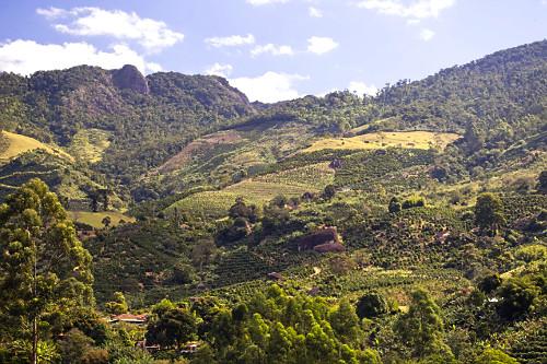Plantações de café e eucalipto na região serrana com áreas de mata atlântica preservadas
