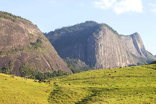 Criação de gado no pasto e formações rochosas do Monumento Natural Estadual Serra das Torres